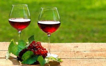 Вино спасает от маразма