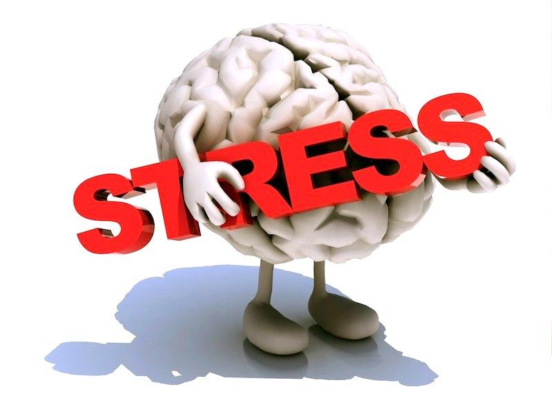 Ученые: стресс можно заесть определенными продуктами