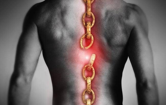 Пробиотики меняют представление о травмах спинного мозга