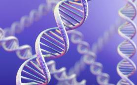 Гены против алкоголя