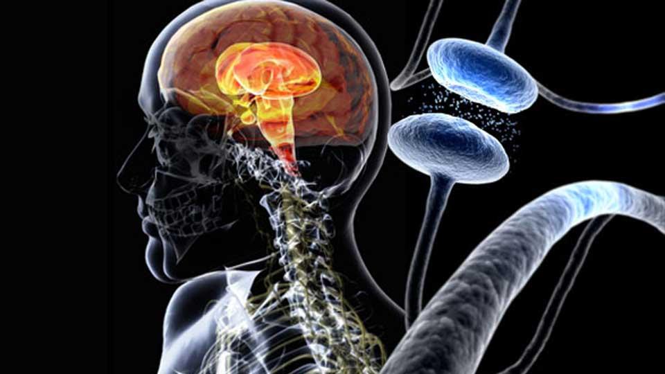 Новая методика лечения разработана для болезни Паркинсона