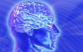Ученые выяснили, как замедлить процесс старения мозга