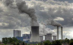 Загрязнение воздуха повреждает мозг