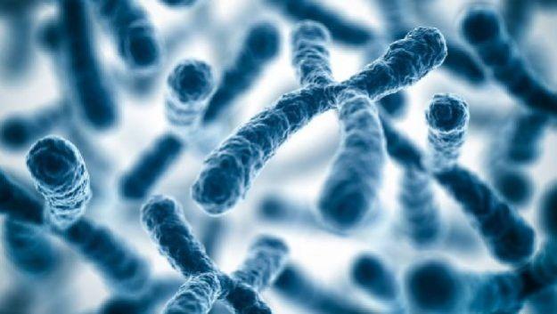 Ученые определили фермент, виновный в развитии синдрома Дауна