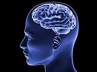 «Мужской мозг» повышает риск развития аутизма, выяснили исследователи