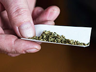 Специалисты рассказали, в чем истинная опасность марихуаны
