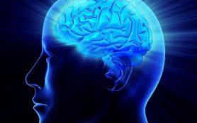 Найдены гены, ответственные за старение мозга