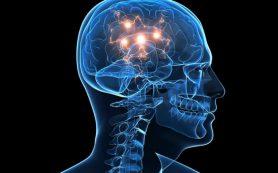 Действие никотина на мозг