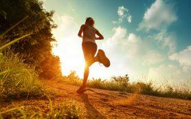 Бег полезен для мозга