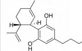 Каннабидиол помогает на 50% сократить частоту приступов у пациентов с синдромом Леннокса-Гасто
