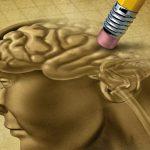 Ген, влияющий на возникновение ожирения, способствует развитию слабоумия