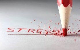 Стресс заставляет полнеть