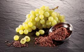 Cодержащиеся в виноградных косточках и красном вине полифенолы помогают замедлить развитие болезни Альцгеймера