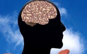 Ученые поведали о пользе забывчивости для развития интеллекта