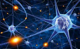 Ученые нашли гены, влияющие на риск развития синдрома Туретта