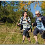 Достаточно продолжительные пешие прогулки в зрелом возрасте способствуют сохранению памяти
