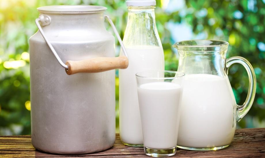 Обычное молоко включает антиоксидантную защиту мозга