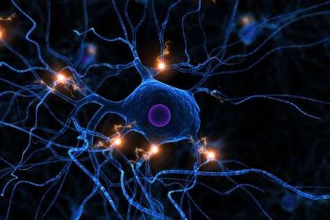 Ученые обнаружили в мозге »центр сарказма»