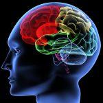 Сотрясение мозга в подростковом возрасте увеличивает риск рассеянного склероза