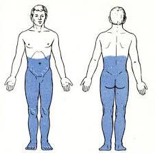 Венозная миелопатия