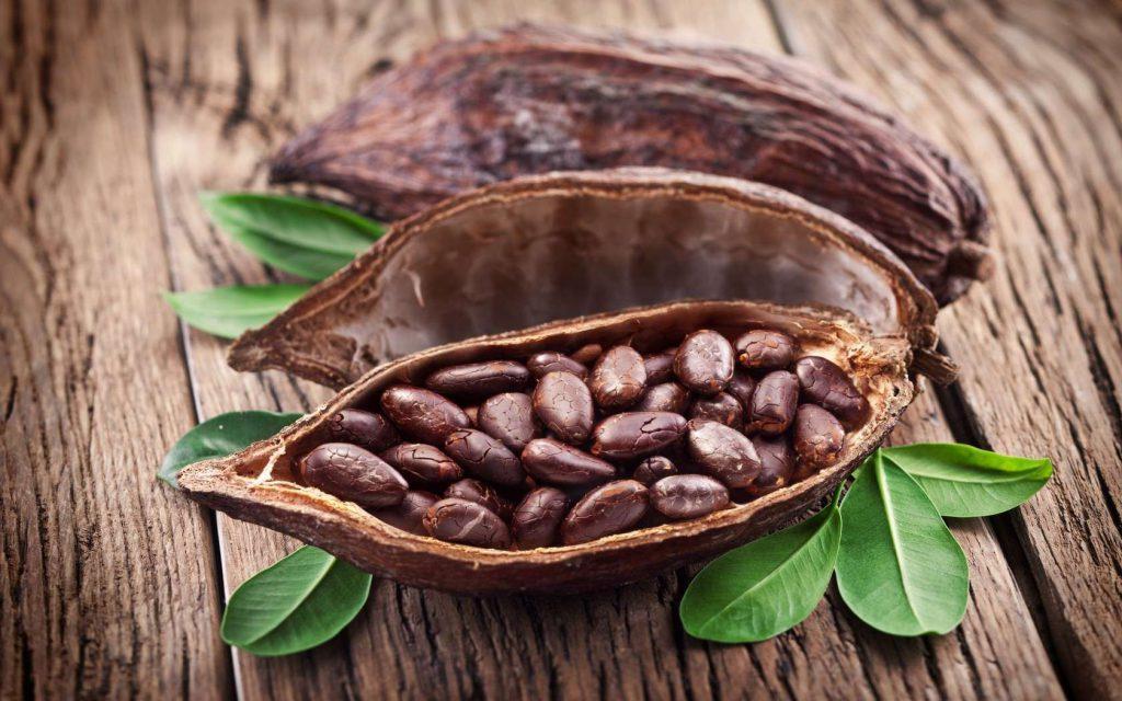 Чашка какао на ночь поможет избежать болезни Альцгеймера