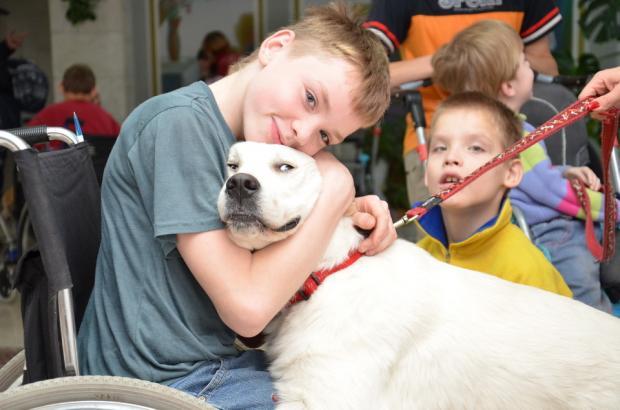 Разновидности пет-терапии: от чего помогают различные животные