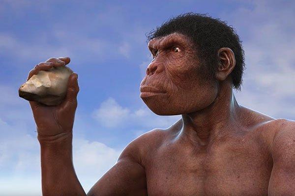 Учёные нашли главную причину появления человека