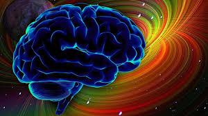 Мозг людей увеличился из-за жизненных проблем