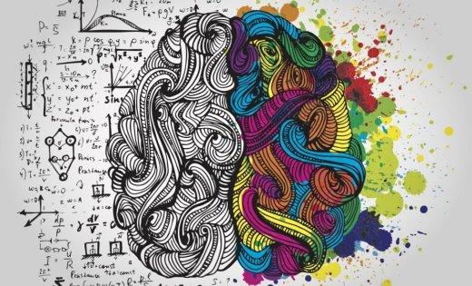 Впервые создано природное соединение, разрушающее мозг человека