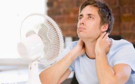 Нерабочая обстановка: какжара влияет намозг