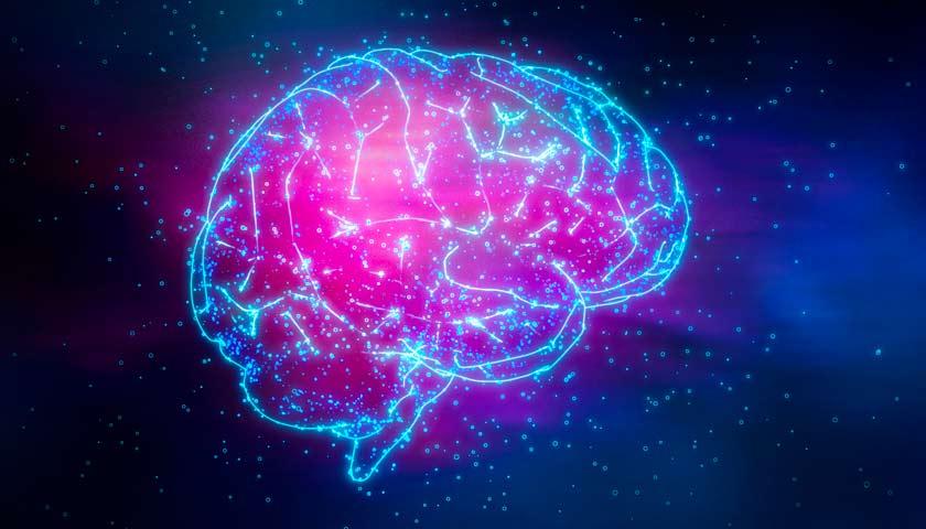Как мозг мешает нам зарабатывать