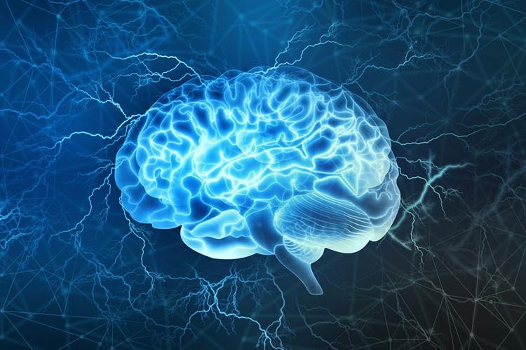 Каждый мозг уникален
