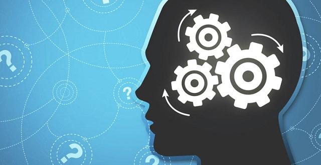 Эффективны ли игры для тренировки мозга?