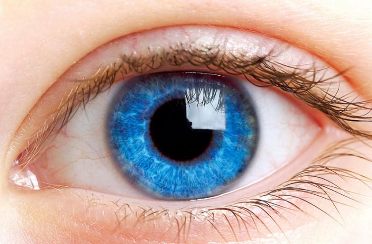 Глаза и мозг человека способны производить «призрачные изображения»