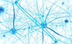 Три человеческих мозга связали в сеть