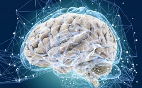 Ученые: чаще стресс — меньше мозг