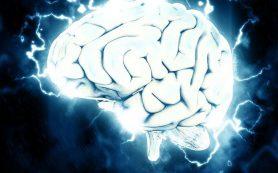 Пользу заморозки мозга при травмах опровергли