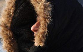 Первые морозы вызывают стресс организма
