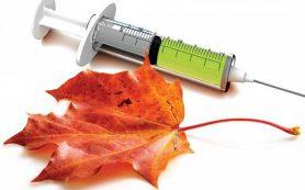 Медики назвали продукты, которые вызывают тревожность и панические атаки
