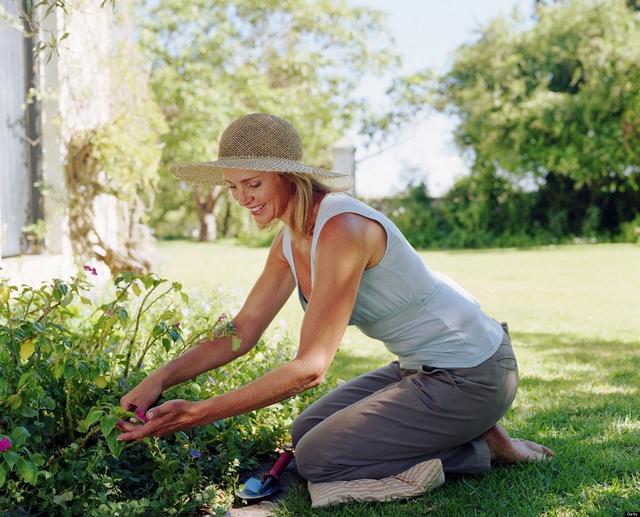 Что такое садовая терапия и работает ли она?