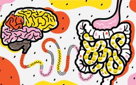 Психобиотики: Что это такое и как они влияют на наше здоровье?