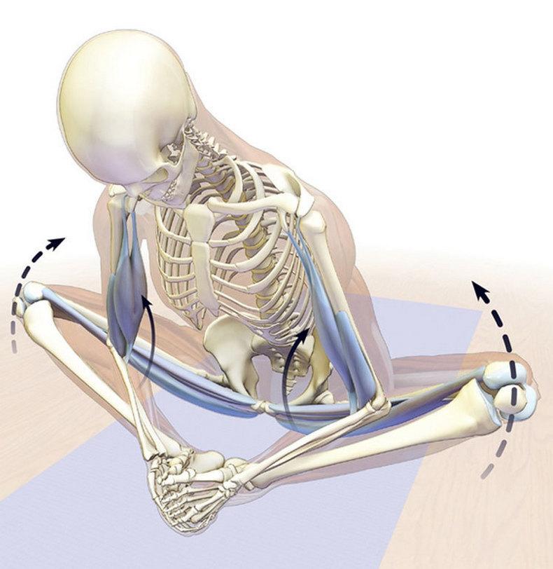 Простые способы избавления от боли в седалищном нерве