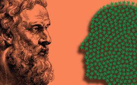 Как марихауна влияет на память